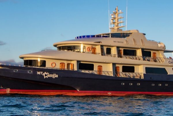 Luxury Galapagos Vacations
