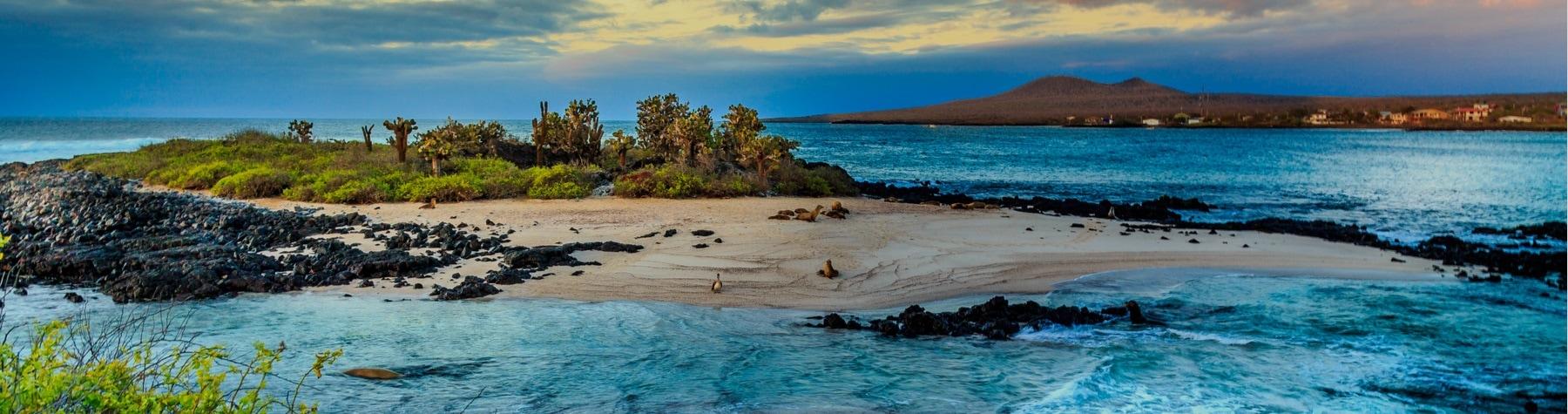Best Luxury Galapagos Cruises 2019