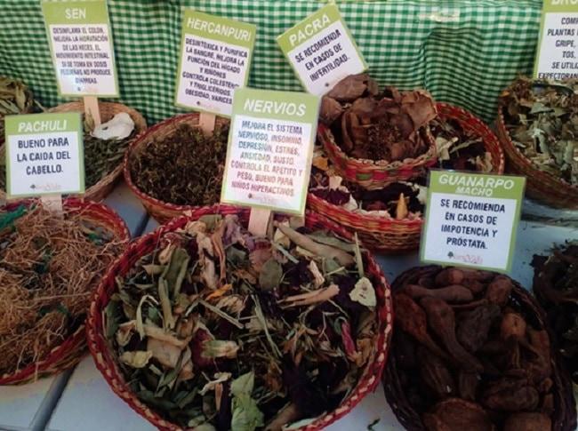 mistura food festival