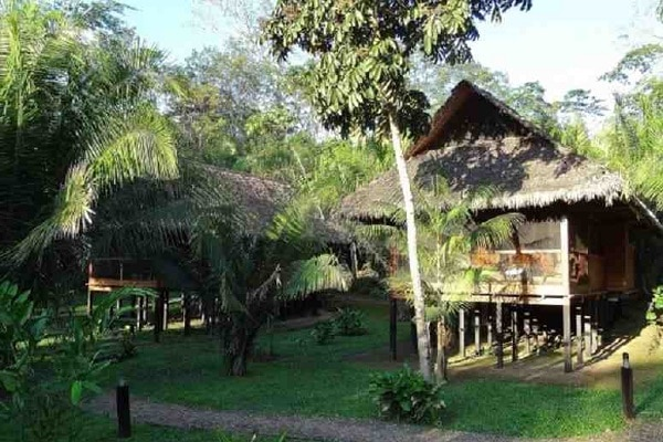 Luxury Amazon Jungle Lodge