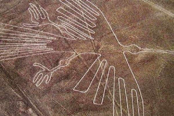 Nazca Bird, Peru