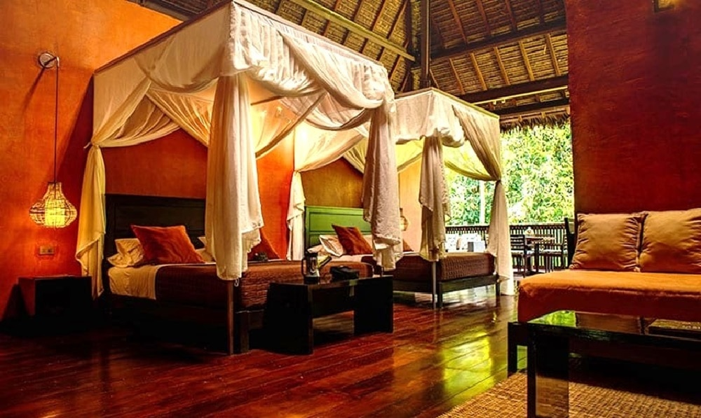 Jungle Lodge Suite Room with 2 Double Beds