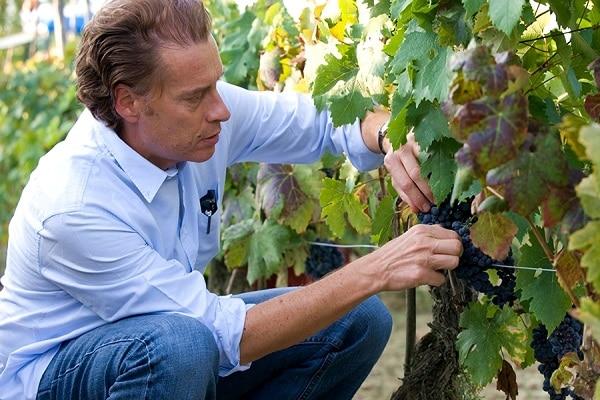 Head Winemaker Alberto Antonini - Casa de Uco