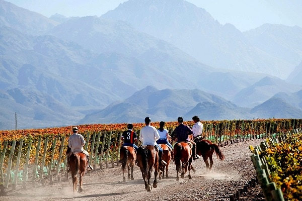 Horseback Riding - Casa de Uco