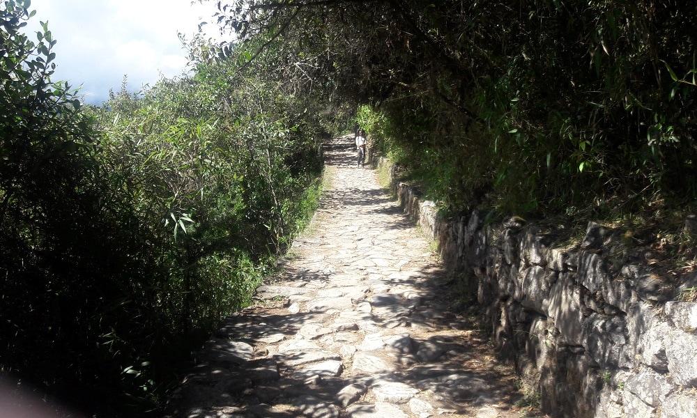 Lone Trekker on Stone Path (Inca Trail)