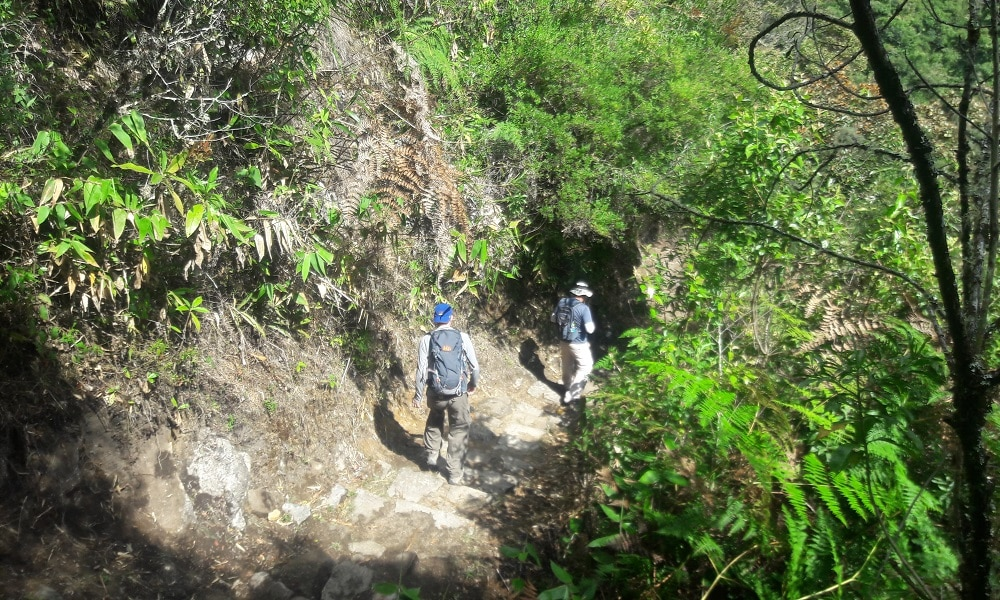 Two hikers descending stone path on Inca Trail
